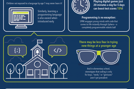 Programming is the Language of Success Infographic