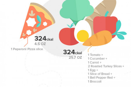 Low Energy Density Foods: An Easy Road to Staying Fit and Healthy Infographic