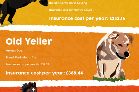How Much Would It Cost to Insure Animals from the Movies?  Infographic