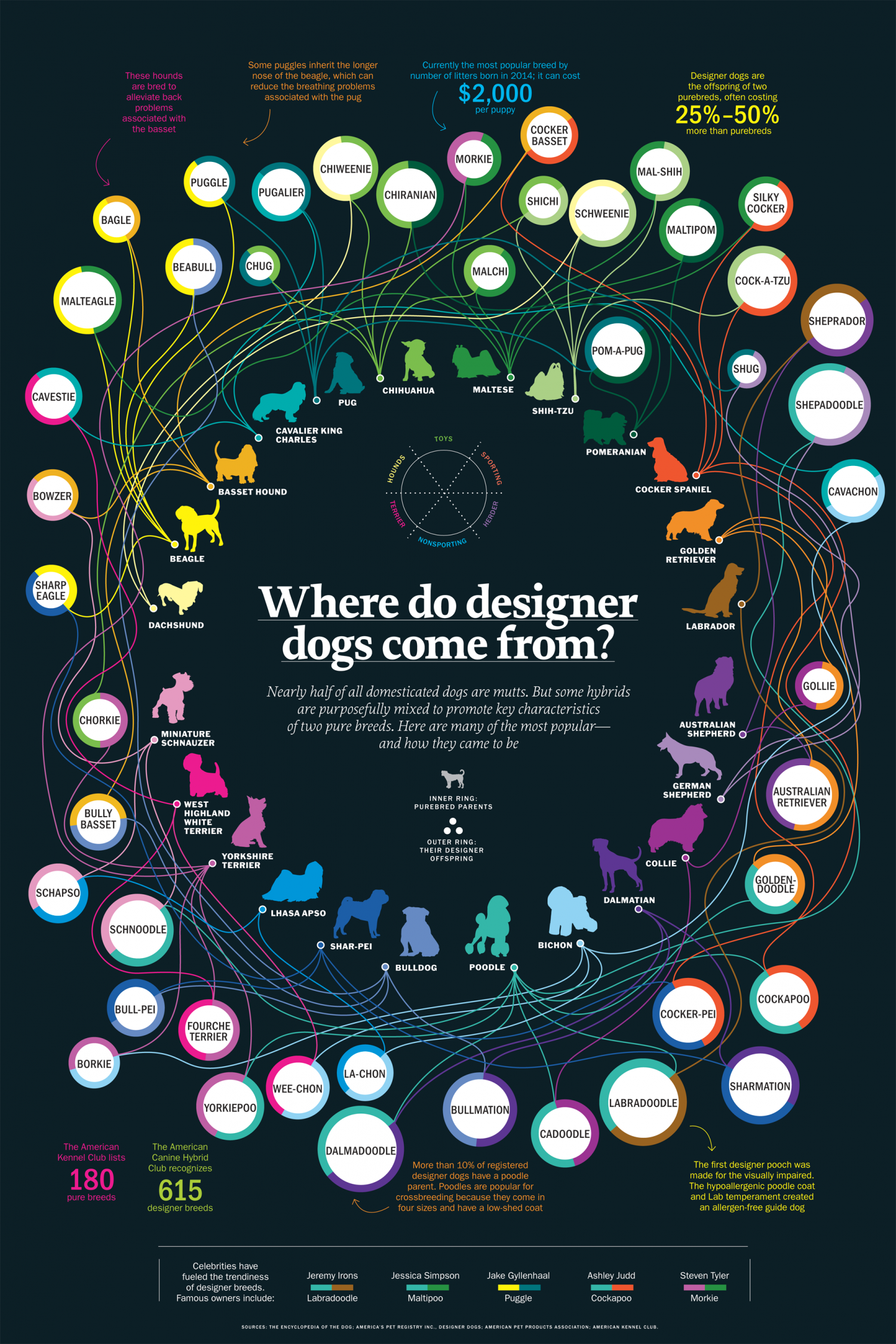 Where Do Designer Dogs Come From? Infographic