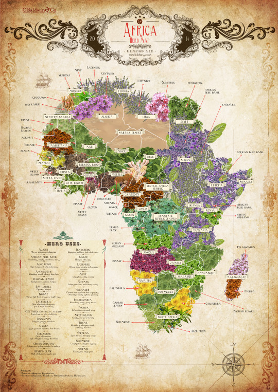The Herb Map of Africa