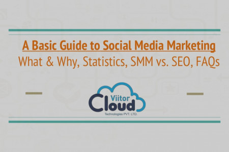 A Basic Guide to Social Media Marketing Infographic