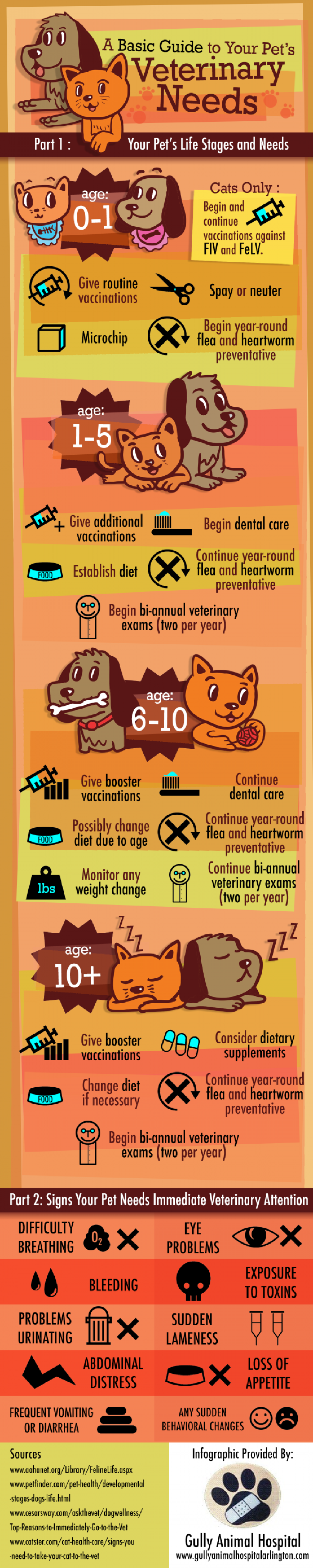 A Basic Guide to Your Pet's Veterinary Needs  Infographic