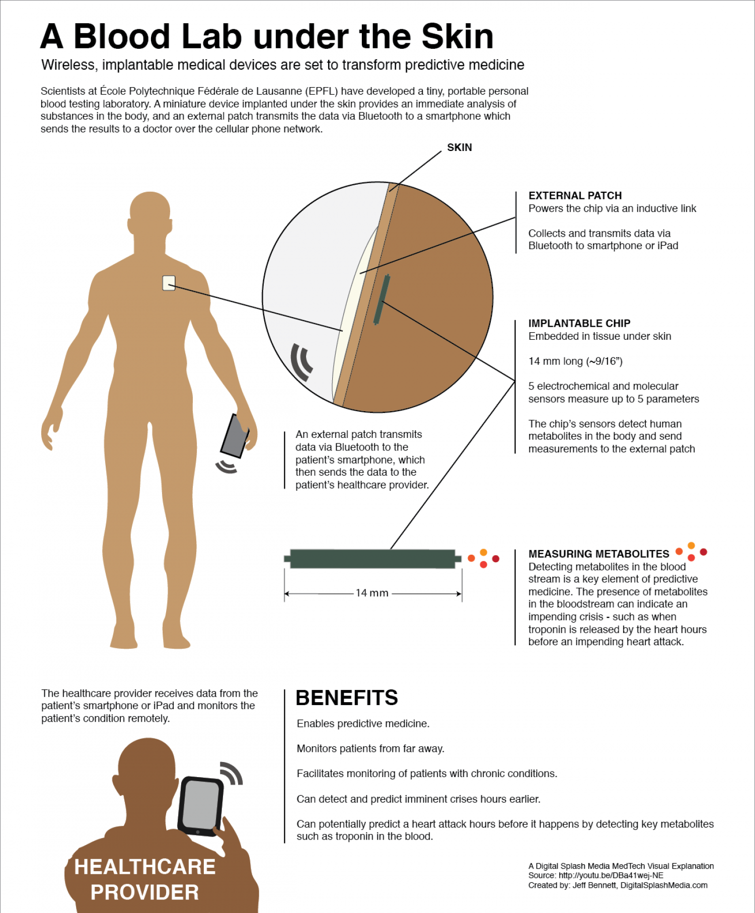 A Blood Lab Under the Skin Infographic