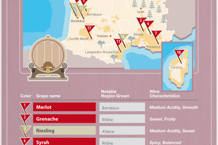 A Bottle of Red, A Bottle of White.. A Wine Map of Southern Europe Infographic