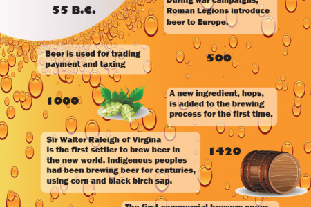 A Brief History of Beer Infographic
