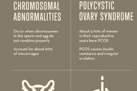 A Closer Look at Miscarriages Infographic