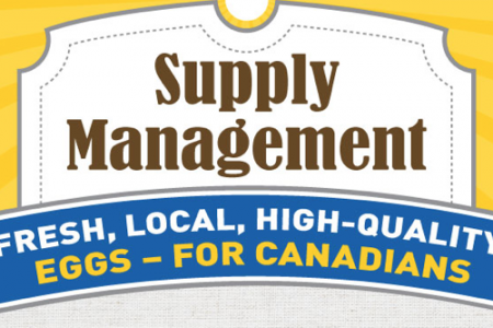 Supply Management Infographic