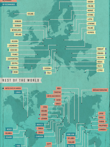 A Driver In Foreign Lands  Infographic