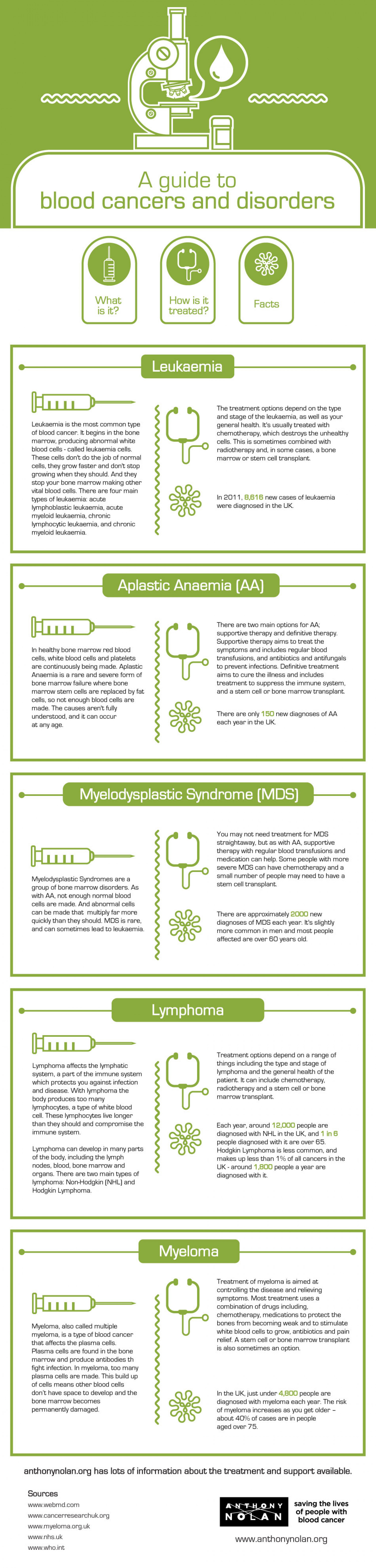 A Guide to Blood Cancers and Disorders Infographic