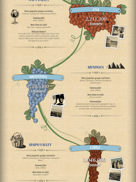 A Guide to the Best Wine Regions in the World Infographic