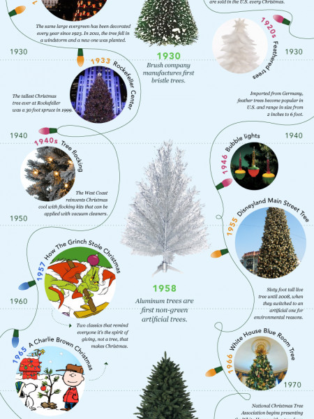 A History of Christmas Trees Infographic