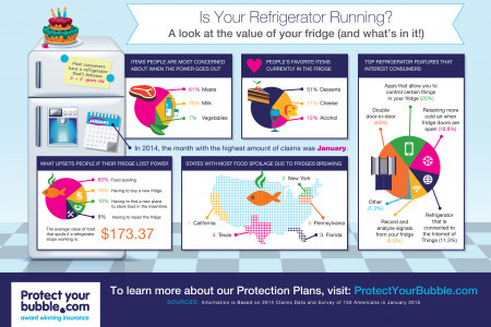 A Look at the Value of Your Refrigerator & the Contents Inside Infographic
