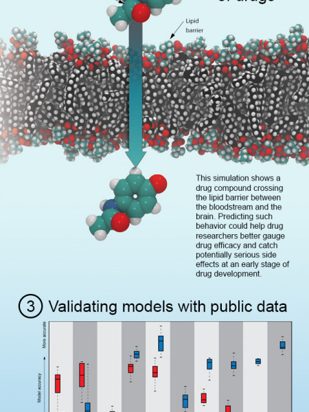 Supercomputers and Drug Development Infographic