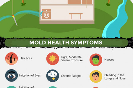 A PLUMBERS GUIDE TO MOLD PREVENTION Infographic