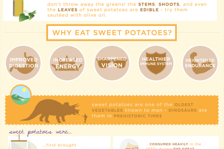 A Pretty Sweet Potato Infographic