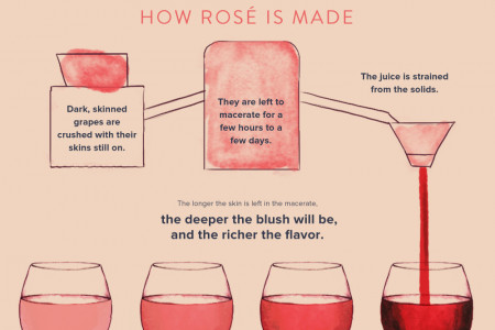 A Rosé Among Thorns Infographic