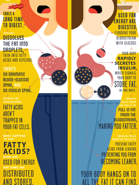 A Tale of Two Meals Infographic