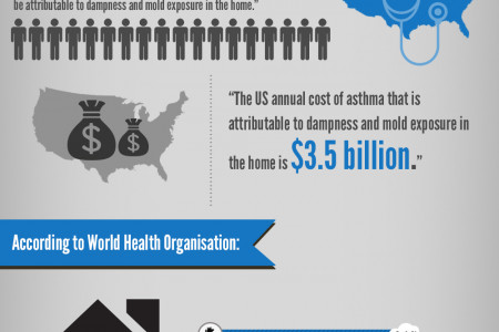 A Visual Guide to Damp, Mold and Indoor Air Pollution Infographic