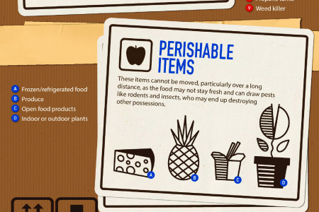 A visual guide to what you should not pack in moving boxes Infographic