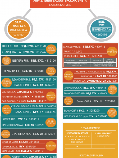 Accountant structure Infographic
