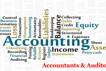 Accountants and Auditors in UAE Infographic