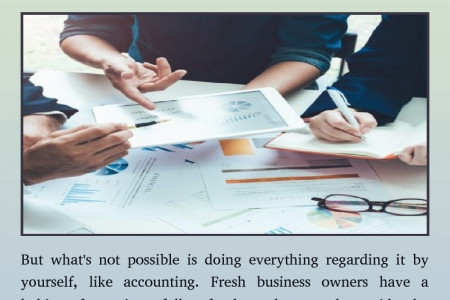 accountants services for businesses in papamoa Infographic