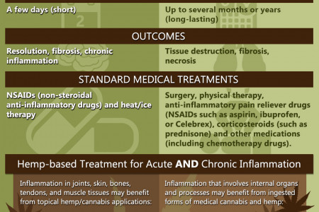 Acute vs Chronic Inflammation Infographic