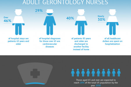 Adult Gerontology Nurses Infographic