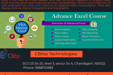 Advance Excel training in Chandigarh  Infographic
