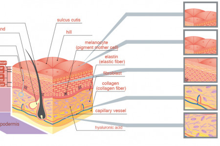 Advanced Dermatology Reviews - The Skin Care Treatment! Infographic