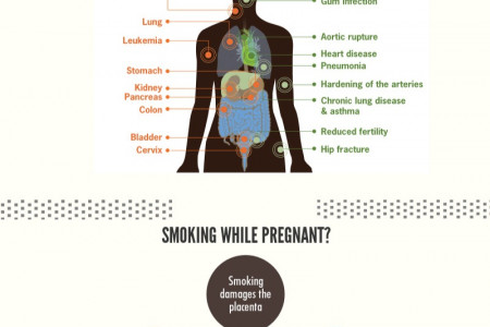 Adverse effects of Tobacco on your health Infographic