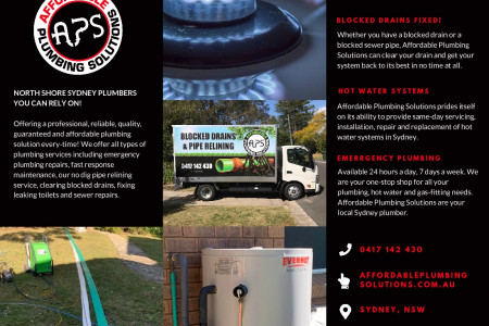 Affordable Plumbing Solutions Brochure Infographic