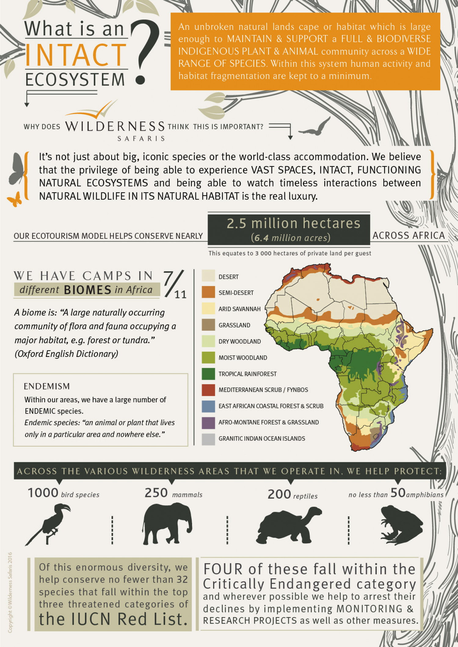 Africa's intact ecosystems Infographic
