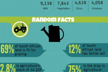 Agriculture in South Africa  Infographic