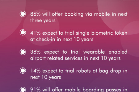 Airlines Striving to improve passenger's journey Infographic