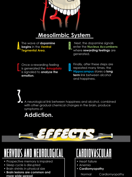 Alcoholism Cause and Effect Infographic