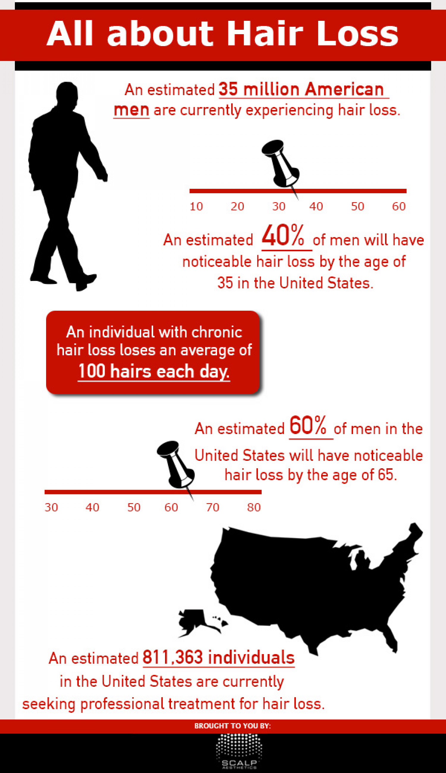 All About Hair Loss Infographic