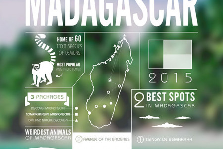 All about Madagascar Infographic