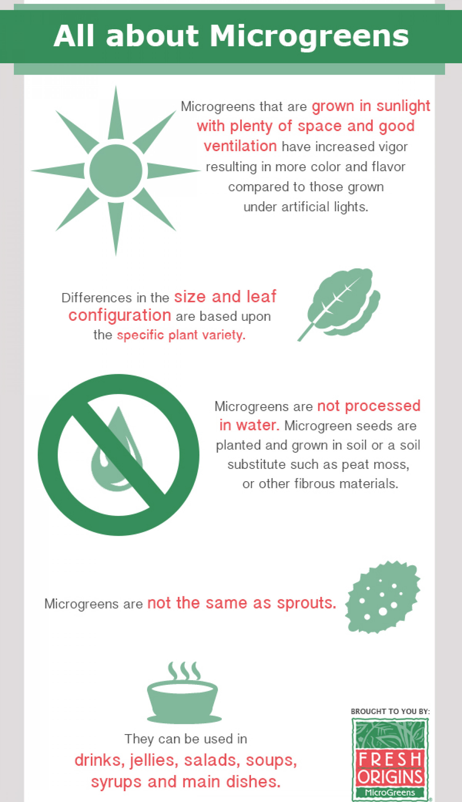 All About Microgreens Infographic