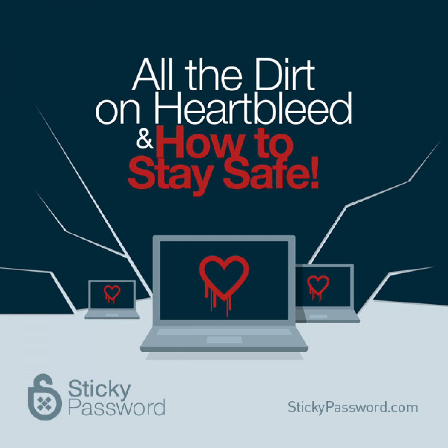All the Dirt on Heartbleed & How to Stay Safe! Infographic
