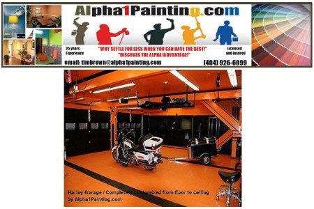 Alpha One Painting Company Profile Infographic