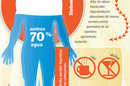 Altas temperaturas Infographic