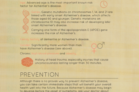 Alzheimer's Disease: Symptoms and Prevention Infographic