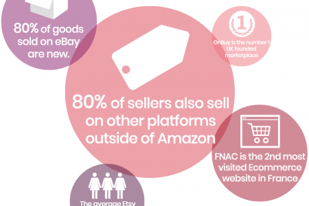 Amazing Facts You Should Know: Shopping Experience Beyond Compare Infographic