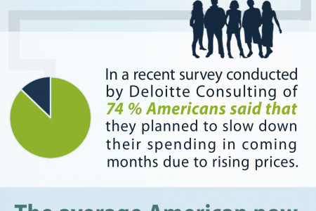 American family finance statistics Infographic