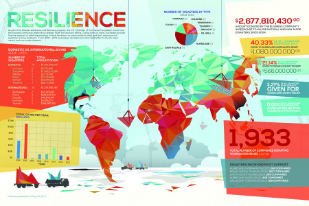 American Business Responses to Natural Disasters Infographic