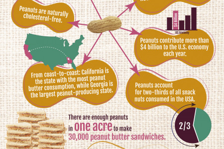 Americans Are Nutty for Peanuts Infographic