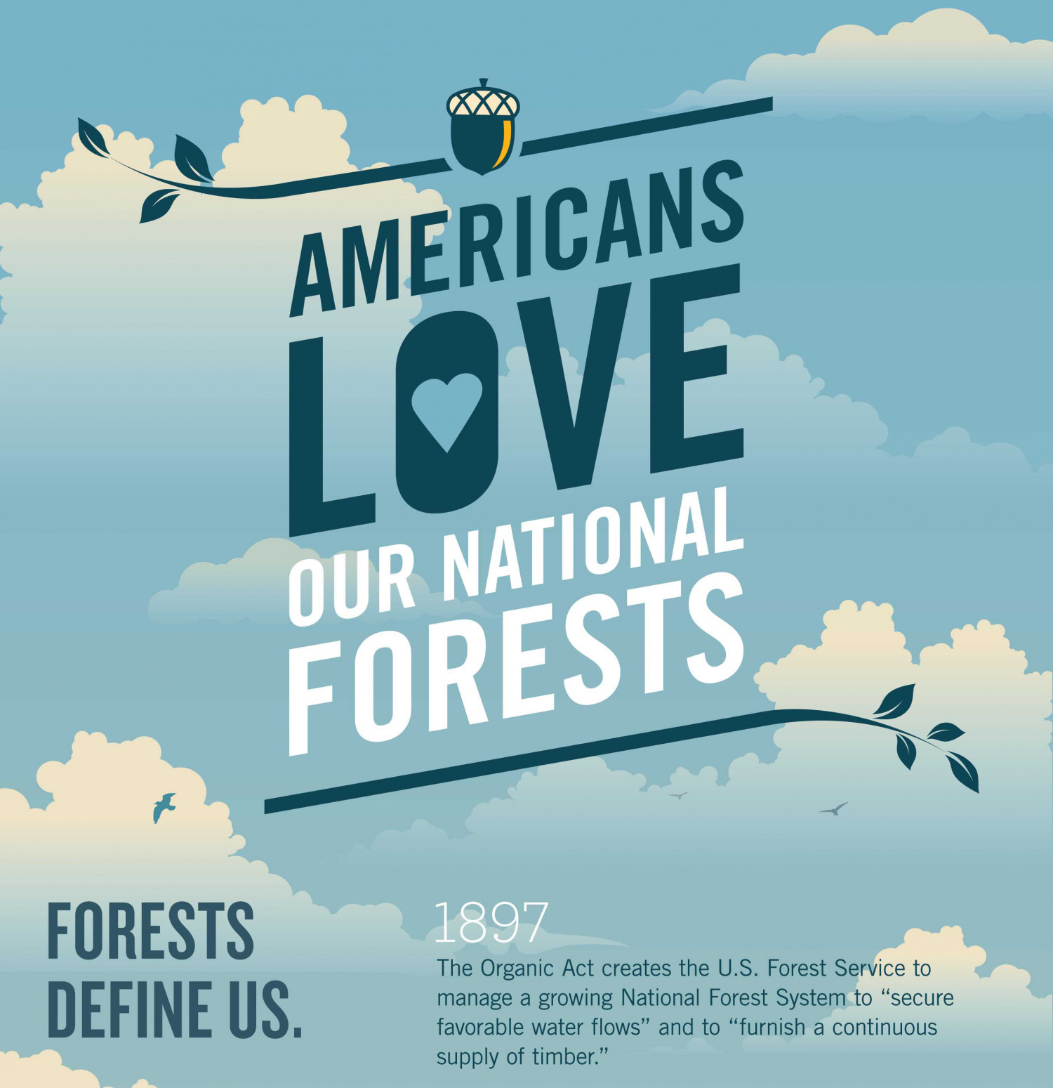 Americans Love Our National Forests Infographic