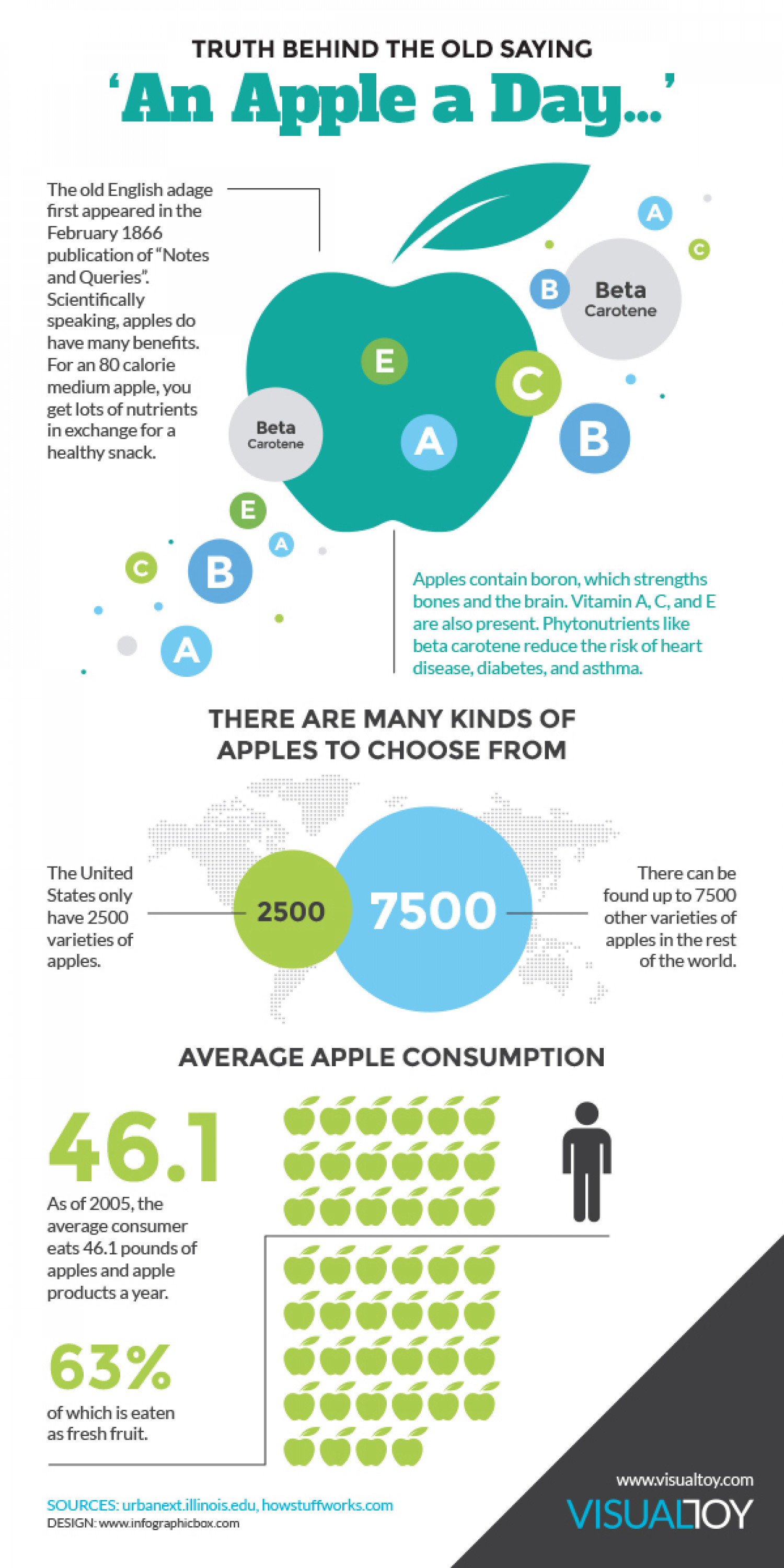 An Apple a Day... Infographic